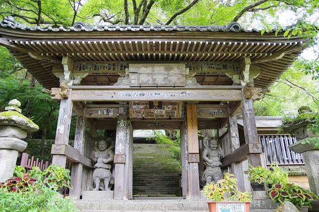 This is the wooden gate of Fukiji Temple, located on the Kunisaki Peninsula in Oita, Japan. The two statues of Nio, one Agyo and the other Ungyo, stand on either side of the gate.