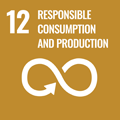 12 Responsible Consumption and Production to achieve the Goal of the SDGs