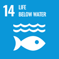 14 Life Below Water to achieve the Goal of the SDGs