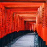 This is a photo of the Senbon Torii gate at Fushimi Inari Taisha Shrine. There are countless vermillion-lacquered torii gates leading up to it. On the pillars of each torii, the name of the person or company that donated the money is written in Japanese.