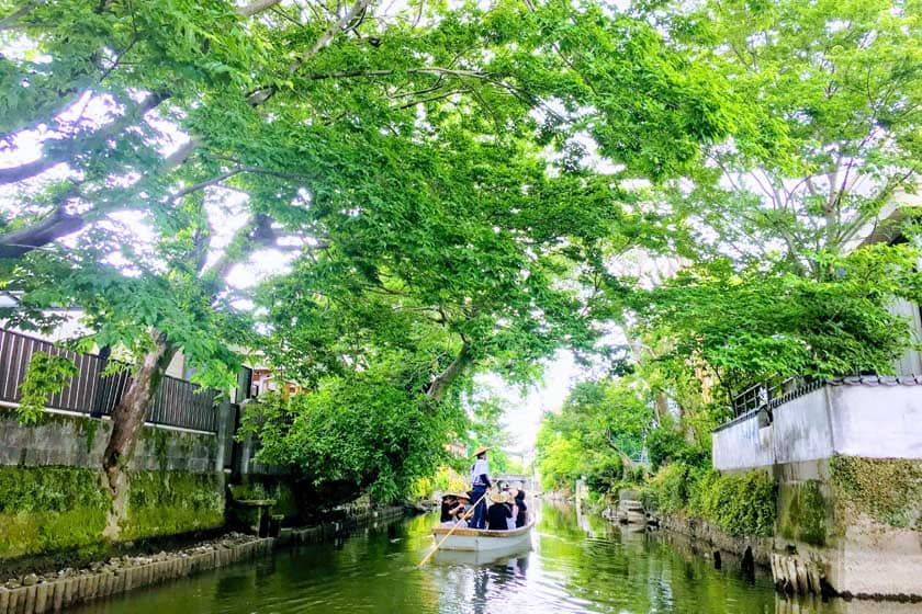 This is a picture of boat riding in Yanagawa. A boat is slowly making its way through the canals of Yanagawa, surrounded by beautiful green trees. The passengers on the boat are wearing sun shades and enjoying the scenery. This image is linked to the Yanagawa Tour page in Fukuoka Walks website.