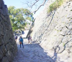 Fukuoka Castle Live Online Walking Tour