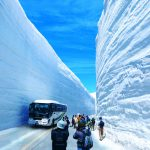 Under a blue sky, a high wall of snow continues on both sides of the road. This is a place on the Tateyama Kurobe Alpine Route in Toyama Prefecture, called Yuki no Otani, where tourists can walk along this road.